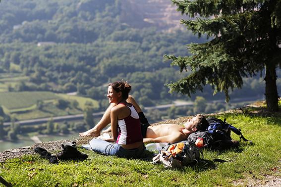 Ob Picknick, Feier oder Grillabend - zu jedem Anlass gibt es den passenden Wein